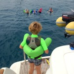 Looking for jellyfish, sharks, barracudas and other scary sea monsters