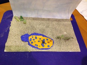 Kate's art project ... she collected the sand from the sea bed at Cooper Island, BVI where she saw this fish.