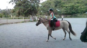Jaci on Mirage, getting back on the saddle :)